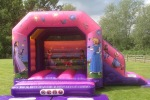 Princess Bouncy Castle and Slide